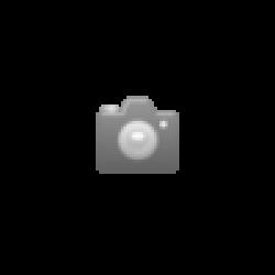 Peterson Hyde Park 50 gr. Dosen  - 1 Original GPK mit 5 Dosen